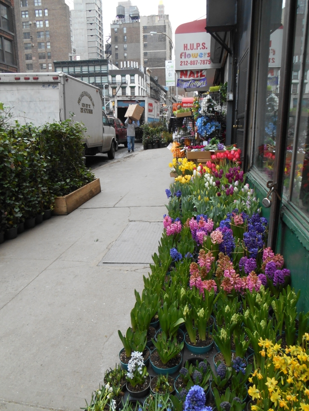 Flower district, West 28th Street, New York, NY (Bar Lois Weeks)